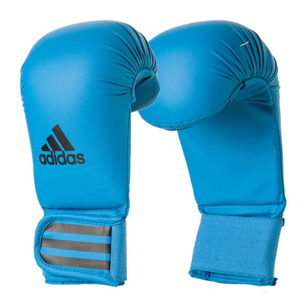 Picture of adidas karate gloves