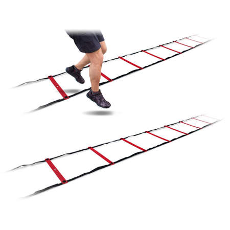 Picture of UFC speed ladder