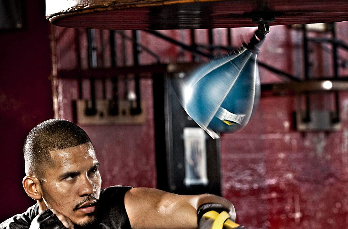 Picture for category Speed bags & balls