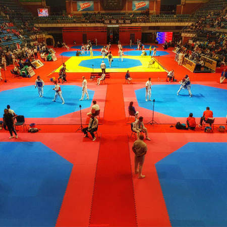 Picture of Rental of octagonal WT taekwondo rings