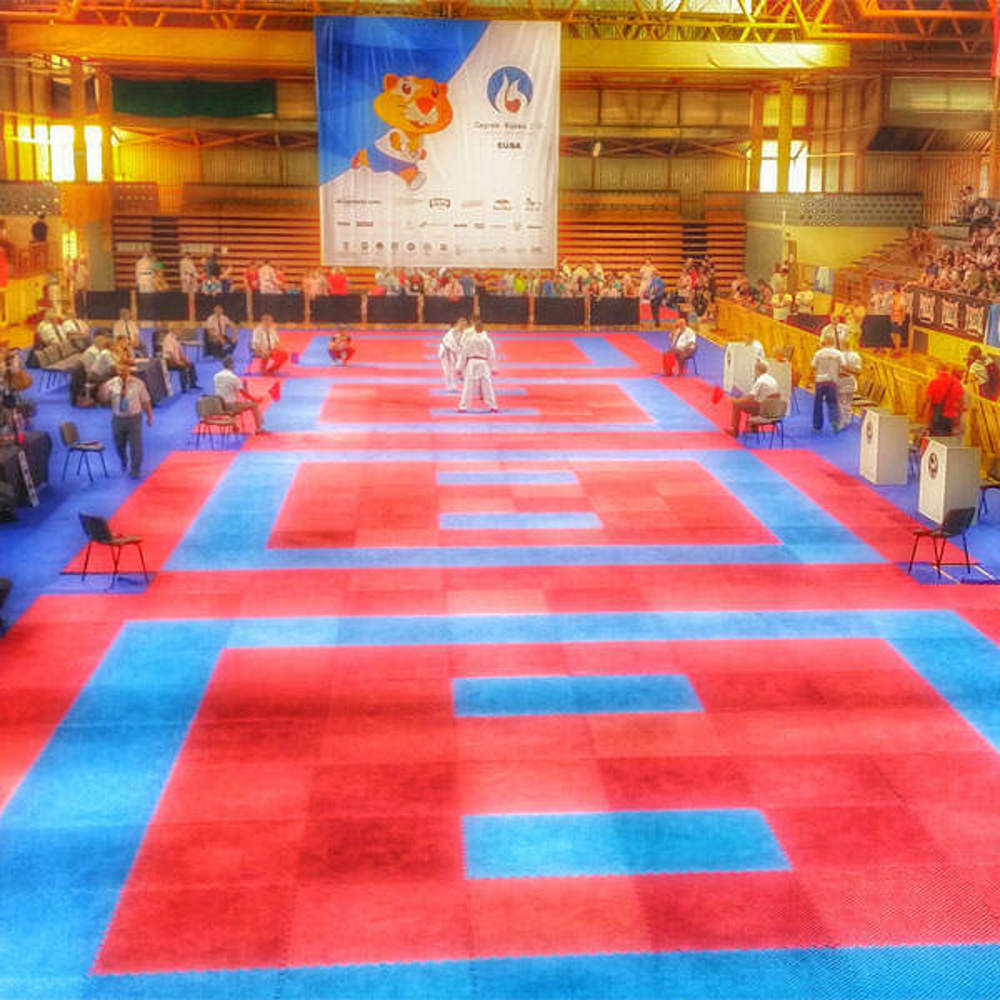 Picture of Rental of tatami mats